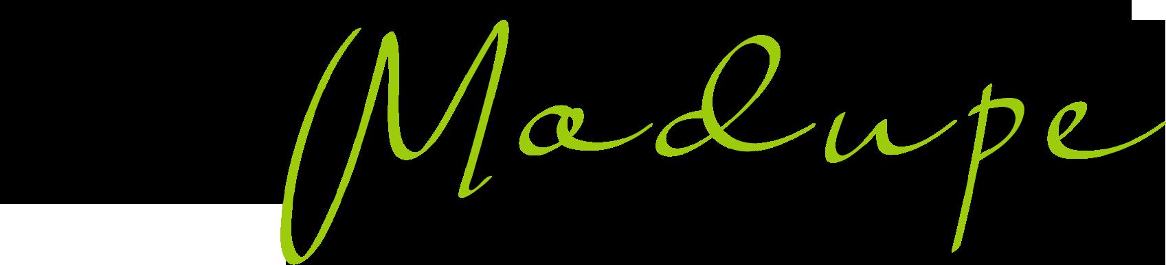 Tshidi Modupe